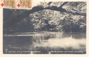 Река Камчия, преминаваща през вековната гора на Лонгоза. Устието на реката и местността Лонгоза са сред любимите маршрути за екскурзия от Варна